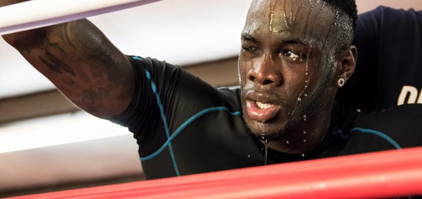 WILDER WILL CLASH WITH ARREOLA